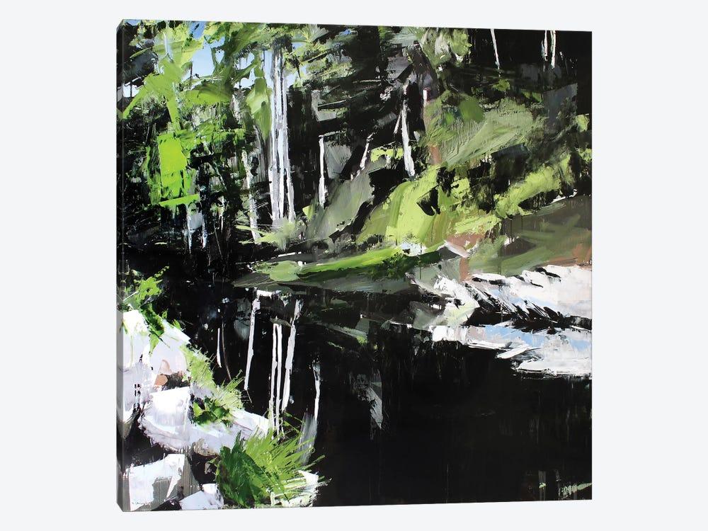 Mitchell River by David Shingler 1-piece Canvas Art