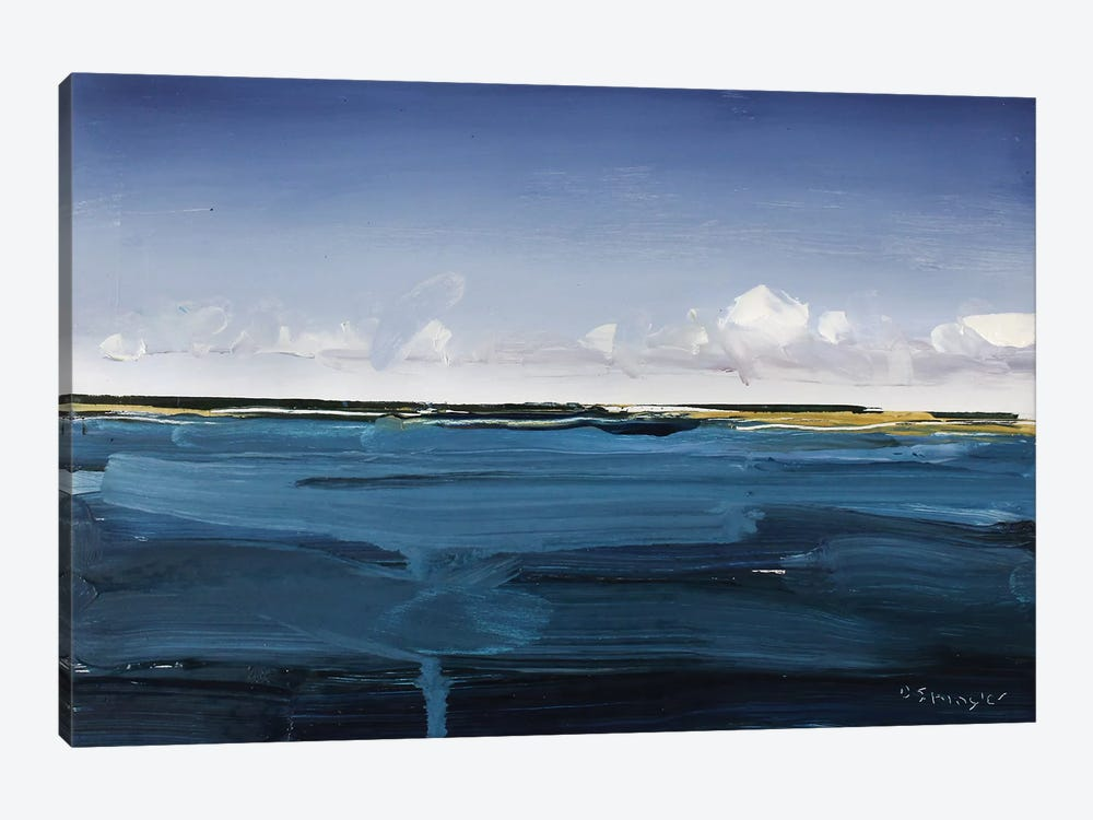 Outer Banks, NC by David Shingler 1-piece Canvas Artwork