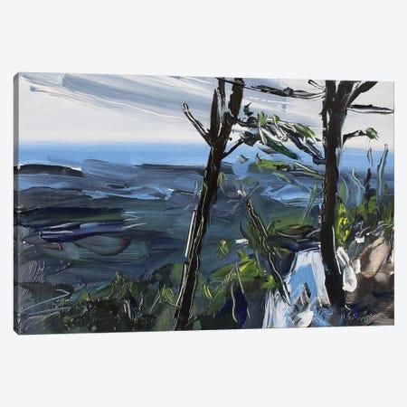 Pilot Mt., NC Canvas Print #SHG27} by David Shingler Canvas Wall Art