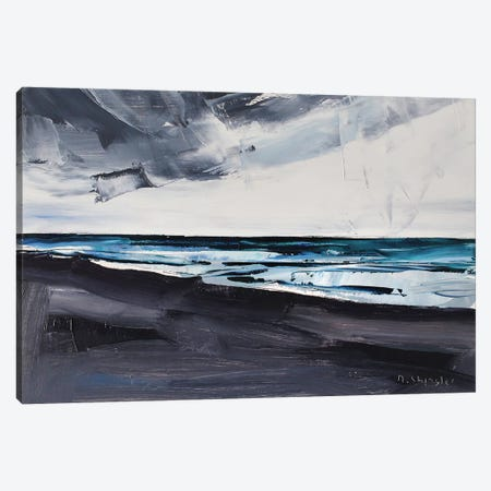 Pine Knoll Shores, Atlantic Beach, NC Canvas Print #SHG28} by David Shingler Canvas Print