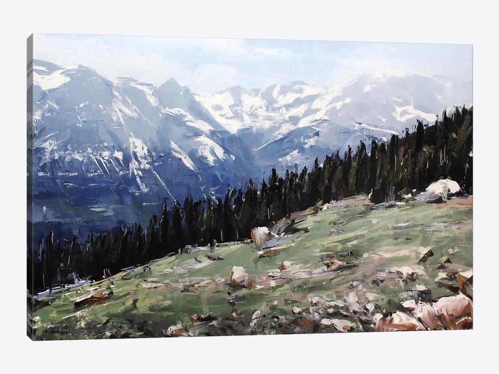 Rocky Mountain National Park Colorado I by David Shingler 1-piece Canvas Artwork
