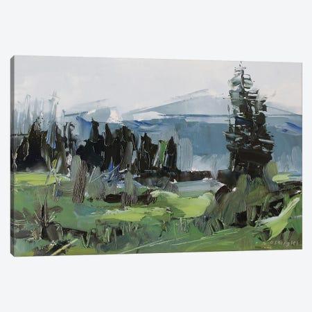 Rocky Mountain National Park Colorado II Canvas Print #SHG32} by David Shingler Canvas Art