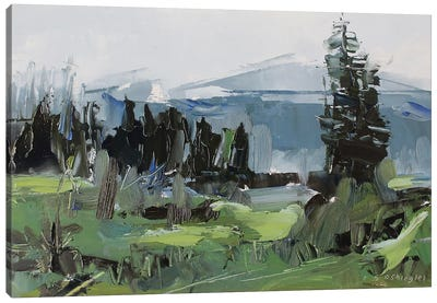 Rocky Mountain National Park Colorado II Canvas Art Print