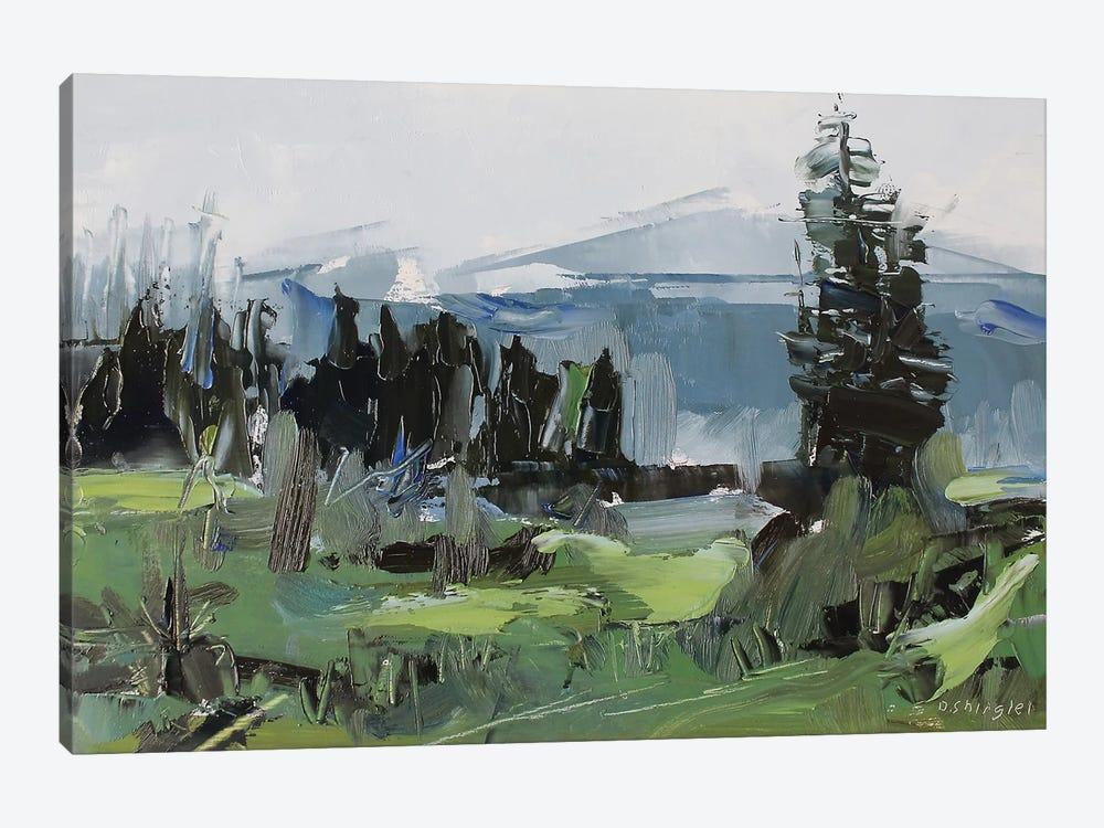 Rocky Mountain National Park Colorado II by David Shingler 1-piece Art Print