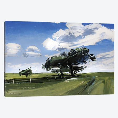 Solo Tree Texas Canvas Print #SHG35} by David Shingler Canvas Print