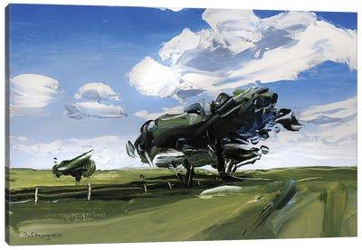 Solo Tree Texas Canvas Art Print