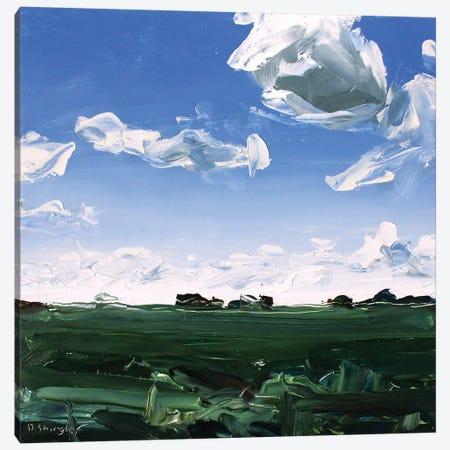 Texas Clouds Canvas Print #SHG37} by David Shingler Canvas Art Print