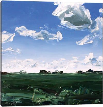 Texas Clouds Canvas Art Print