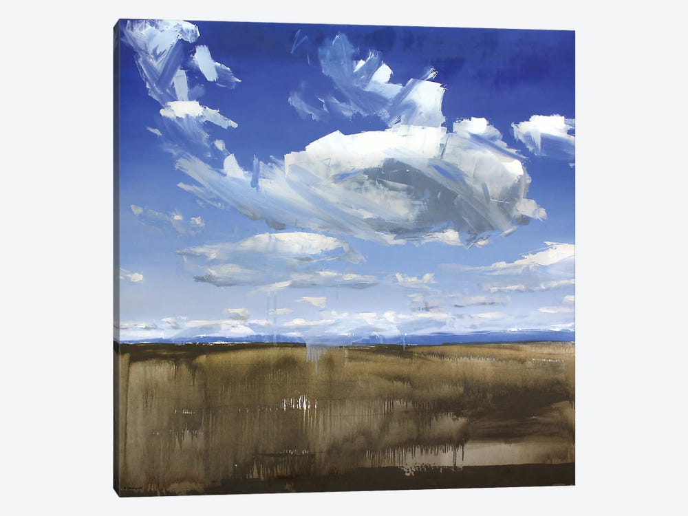 Wyoming Clouds by David Shingler 1-piece Art Print
