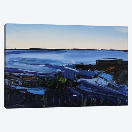 Cape Hatteras National Seashore I Canvas Print #SHG5} by David Shingler Canvas Wall Art