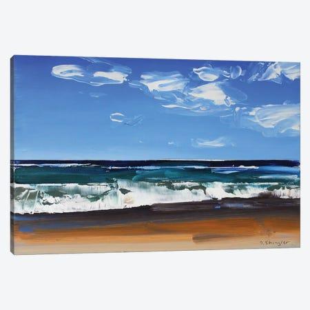 Cape Hatteras National Seashore II Canvas Print #SHG6} by David Shingler Canvas Artwork