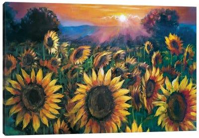 Sunflowers Field Canvas Art Print
