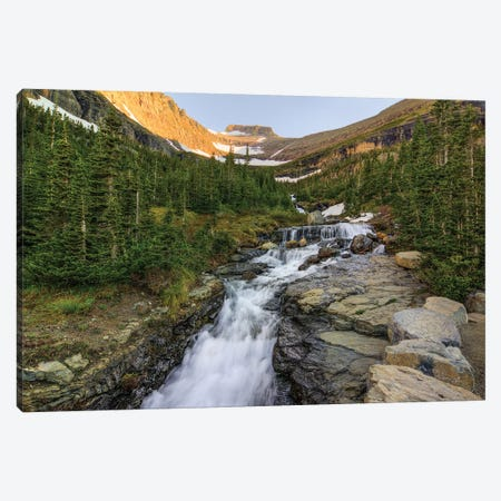 Falling For Beauty Canvas Print #SHL100} by Bill Sherrell Canvas Wall Art