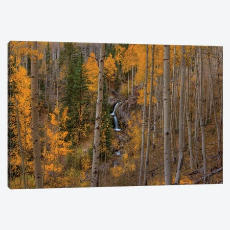 Falling Treasure Canvas Print #SHL102} by Bill Sherrell Canvas Artwork