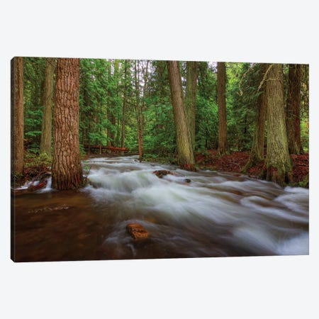 Flow Canvas Print #SHL108} by Bill Sherrell Canvas Wall Art