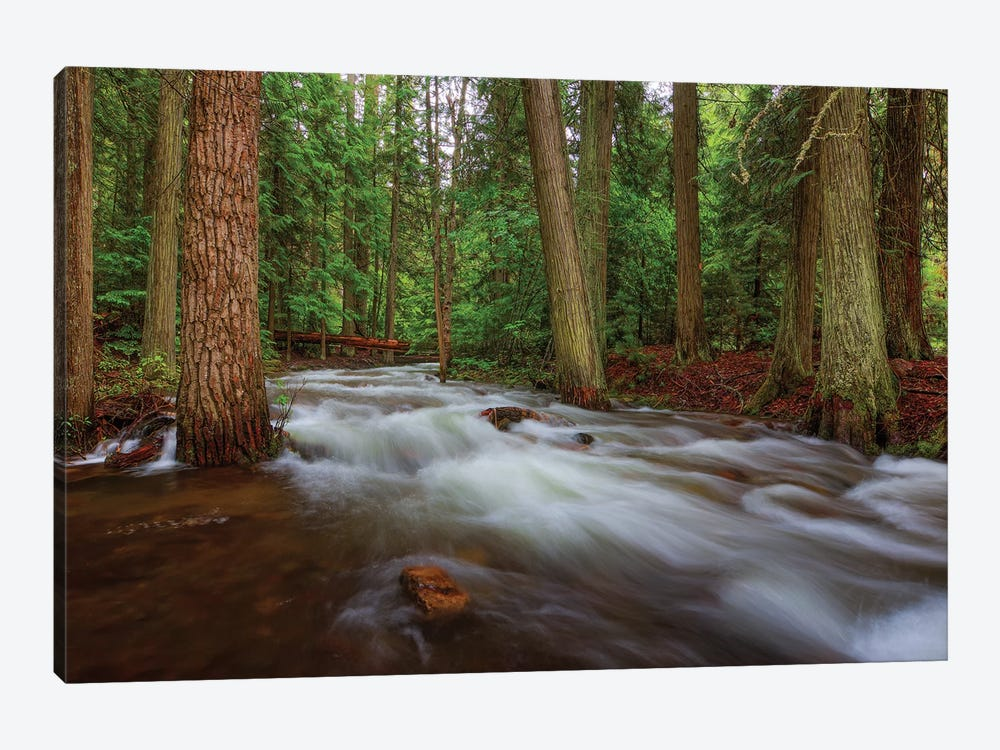 Flow by Bill Sherrell 1-piece Canvas Print