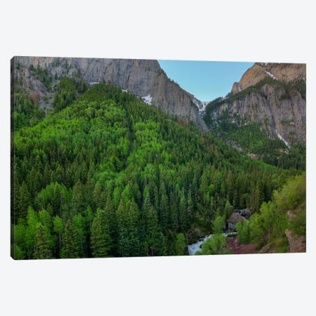 A Mountain Of Green Canvas Print #SHL10} by Bill Sherrell Canvas Print
