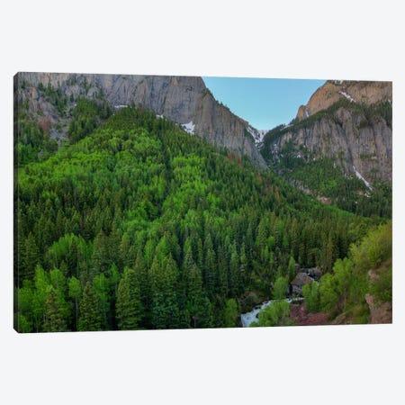 A Mountain Of Green Canvas Print #SHL10} by Bill Sherrell Canvas Print