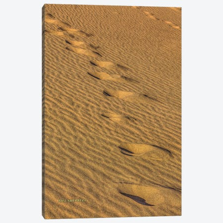 Footprints In The Sand Canvas Print #SHL110} by Bill Sherrell Canvas Print