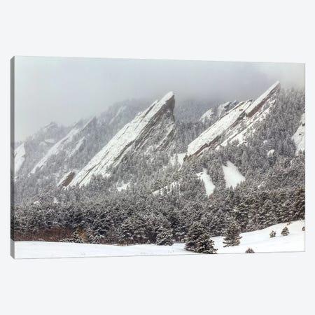 Frozen Rapture Canvas Print #SHL113} by Bill Sherrell Art Print
