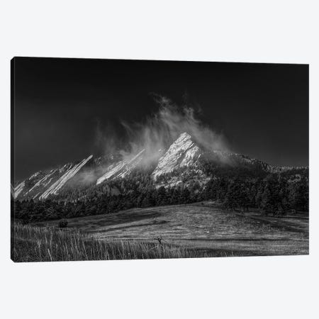 Frozen Whimsey, B&W Canvas Print #SHL115} by Bill Sherrell Canvas Art