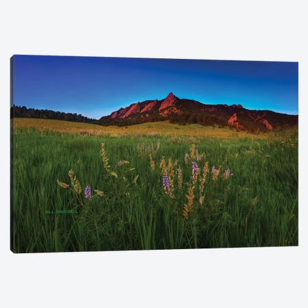 Glowing Flatirons And Wildflowers Canvas Print #SHL116} by Bill Sherrell Canvas Artwork