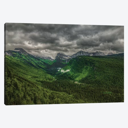Going Green Canvas Print #SHL117} by Bill Sherrell Canvas Artwork