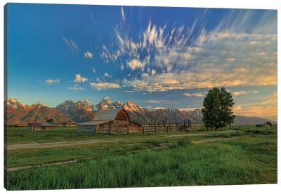 Golden Teton Morning Canvas Art Print