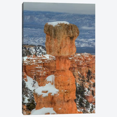 A Pillar Of Strength Canvas Print #SHL11} by Bill Sherrell Canvas Print