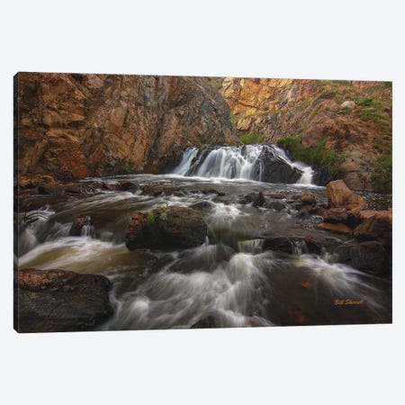 Graceful Journey Canvas Print #SHL120} by Bill Sherrell Canvas Artwork