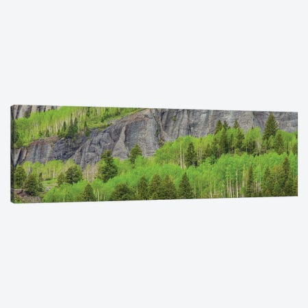 Green Dream Canvas Print #SHL121} by Bill Sherrell Canvas Wall Art