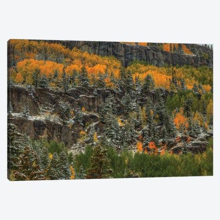 Ledges Of Gold Canvas Print #SHL133} by Bill Sherrell Canvas Print