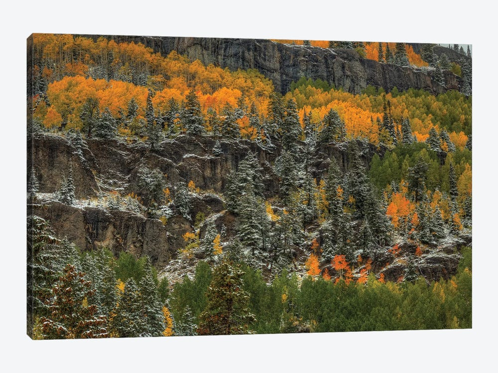 Ledges Of Gold by Bill Sherrell 1-piece Art Print