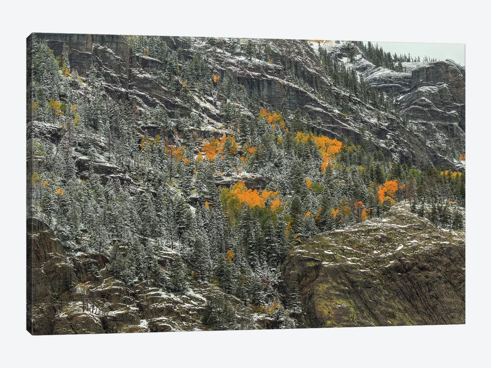 Mountain Lace And Autumn Pockets by Bill Sherrell 1-piece Canvas Wall Art