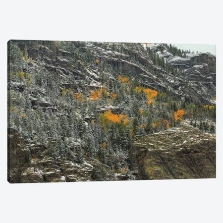 Mountain Lace And Autumn Pockets Canvas Print #SHL141} by Bill Sherrell Canvas Wall Art