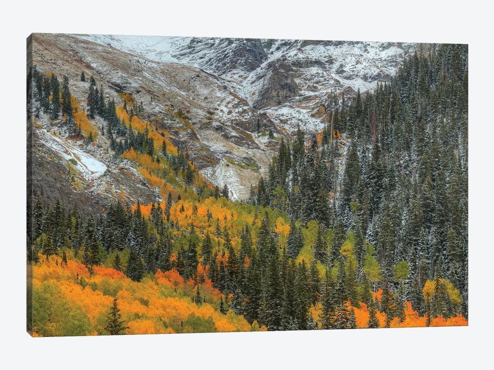Mountains And Aspens by Bill Sherrell 1-piece Canvas Print
