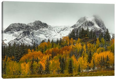 A Rocky Mountain Autumn Canvas Art Print
