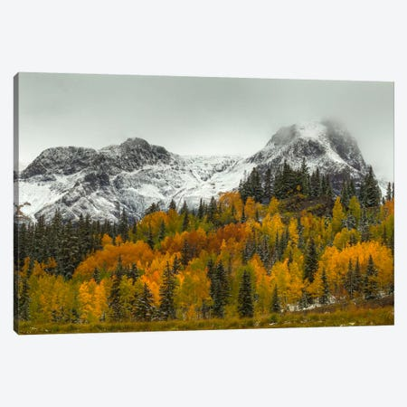 A Rocky Mountain Autumn Canvas Print #SHL14} by Bill Sherrell Canvas Art