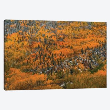 Orange Endeavor Canvas Print #SHL150} by Bill Sherrell Canvas Art Print