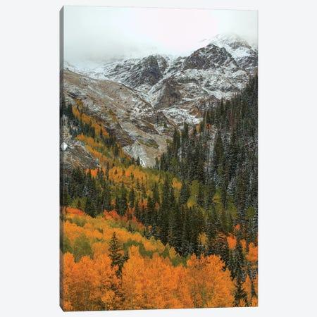 Orange Flames Canvas Print #SHL152} by Bill Sherrell Canvas Art Print