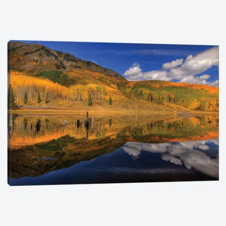 Reflecting On Autumn Canvas Print #SHL167} by Bill Sherrell Canvas Art Print
