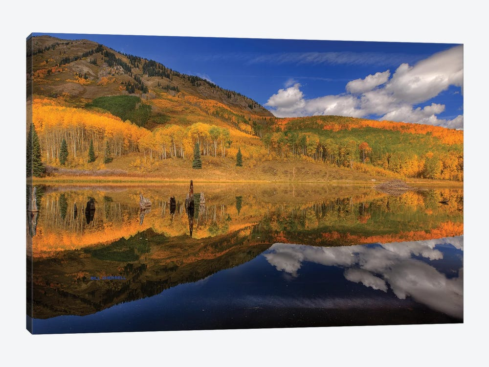 Reflecting On Autumn by Bill Sherrell 1-piece Canvas Artwork