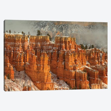 Rise And Shine 3-Piece Canvas #SHL171} by Bill Sherrell Canvas Print