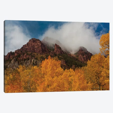 Ruggedness Unveiled Canvas Print #SHL174} by Bill Sherrell Canvas Wall Art