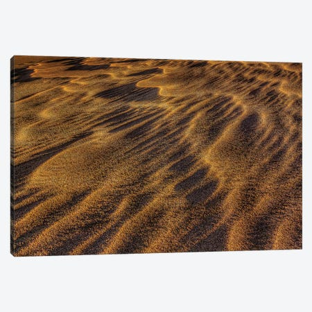Sand Waves Canvas Print #SHL176} by Bill Sherrell Canvas Art