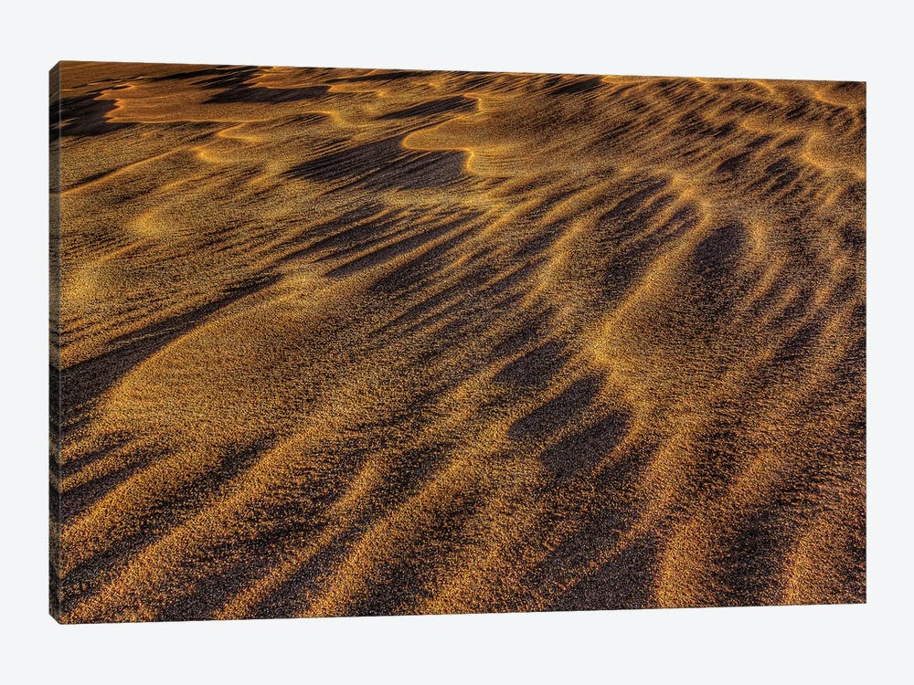 Sand Waves by Bill Sherrell 1-piece Canvas Wall Art