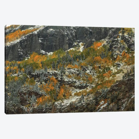 Sheer Cliffs And Dazzling Color Canvas Print #SHL179} by Bill Sherrell Canvas Art Print
