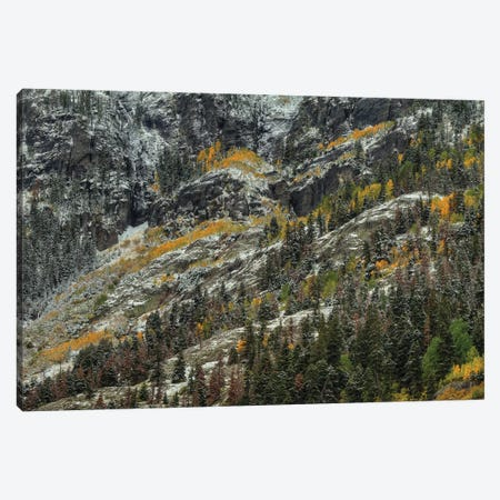 Slivers Of Color Canvas Print #SHL180} by Bill Sherrell Canvas Artwork