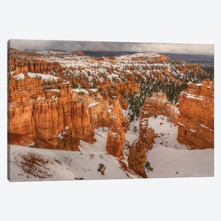 Storm Brewing Over Bryce Canyon Canvas Print #SHL189} by Bill Sherrell Canvas Wall Art