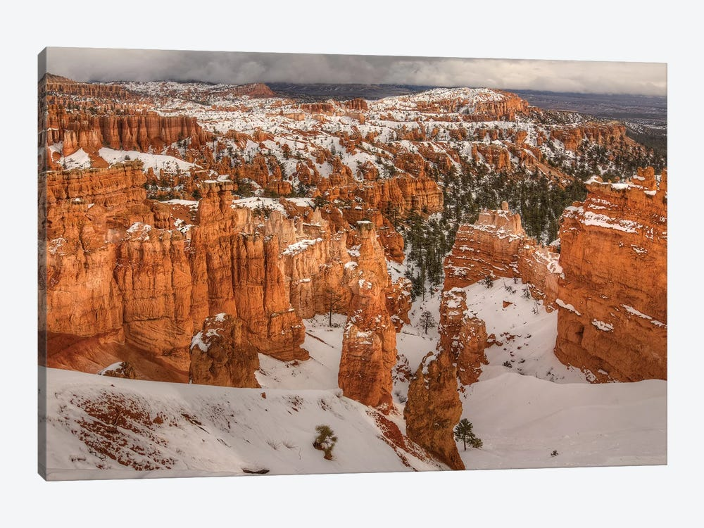 Storm Brewing Over Bryce Canyon 1-piece Canvas Artwork